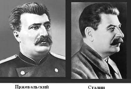 Сталин сын Пржевальского. Туристы, посещающие Санкт-Петербург, возле одного из городских памятников частенько спрашивают: «Скажите, а почему у ног Сталина лежит верблюд», на что экскурсоводы