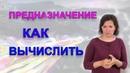 Предназначение Итоговая цифра в нумерологии Школа Анастасии Даниловой