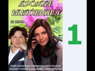 Аромат шиповника 1 серия 18 08 2014 смотреть онлайн