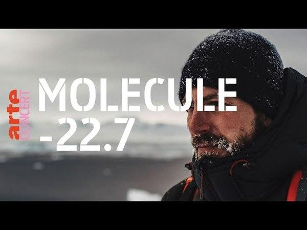 Molécule - Live @ l'Élysée Montmartre