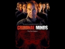 Сериал Мыслить как преступник/Criminal Minds 1 сезон