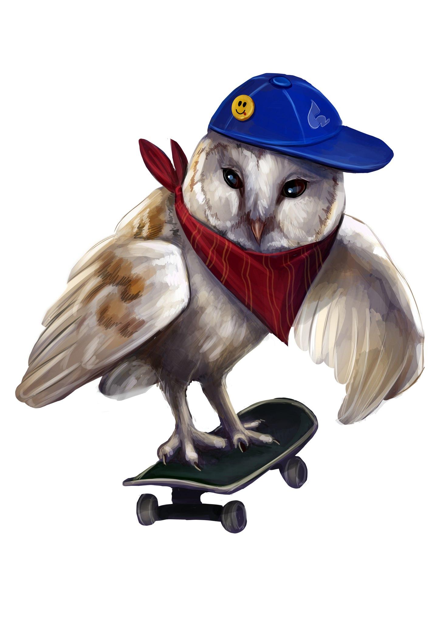 Картинки сова на скейте