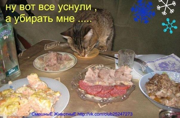 http://cs616420.vk.me/v616420493/eee/0_u0xCcLQ3U.jpg
