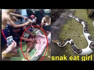 Big snake and girl 2018 Eid day