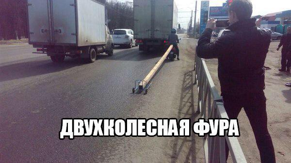 avyol6_XCVo.jpg