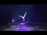 Duo Solys - 16ème Festival International du Cirque
