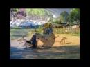 Пенсионеры Германии Cochem необыкновенно красивый город в Rhineland Palatinate Germany🇩🇪