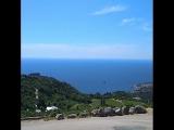 Южный берег Крыма, Голубой залив. Начинается полуденный зной. Запах можжевельника и секвойи передать невозможно, боюсь опьянения