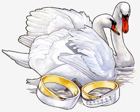 рисунки свадебные: