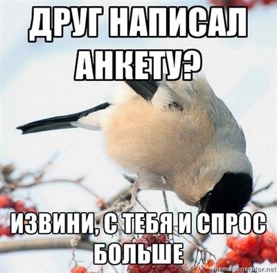 http://cs418125.userapi.com/v418125139/21a4/EOXtH6_nGtw.jpg