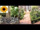 Как украсить сад живой изгородью и водным элементом? Секреты Садовода. Серия 33. Дача ТВ