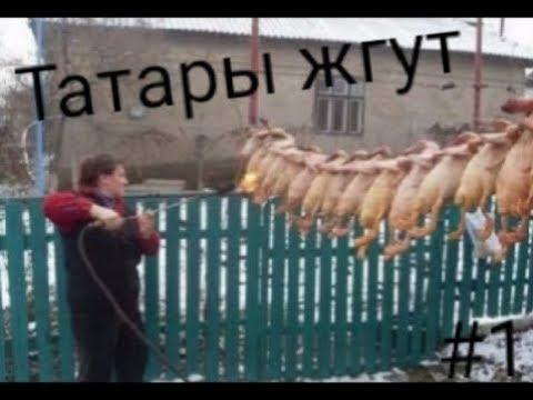 Аты юлы белән татарча!))