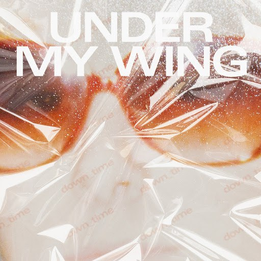 Young Galaxy альбом Under My Wing