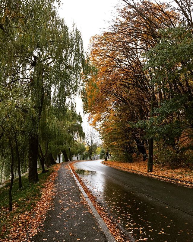 UGIQD9bVqLA - Осень!