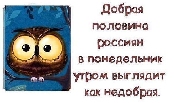 Фото №456400459 со страницы Валерии Сагацкой