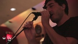 Grizzly Bear -