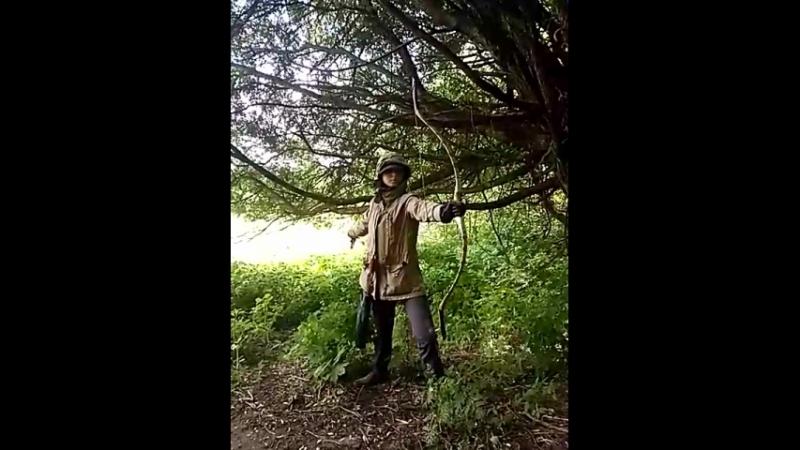 Гун И. Искусство стрельбы из традиционного лука. Маргарита Щ. и И Фань Ли-эр шэ ши