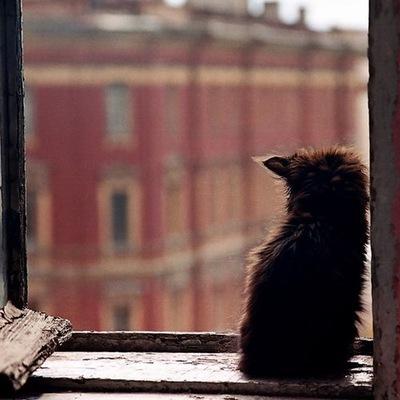 Евгений Кильдеев, 3 января 1987, Степное, id156512061