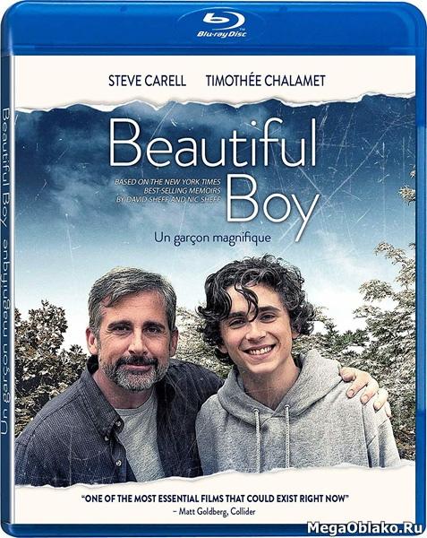 Красивый мальчик / Beautiful Boy (2018/BDRip/HDRip)