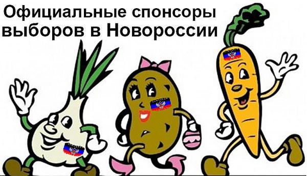 Если хоть десяток человек не сядет за фальсификацию выборов - Украина откатится назад, - Чорновол - Цензор.НЕТ 2321