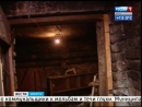 Охота на мошку подвальную Квартиру иркутян атаковали насекомые