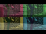 Собаки Качалова - В Бремен - Feat_ СиЛя, Михаил Башаков, Умка, Борис Плотников