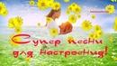 Красивые радостные солнечные песни для души Песни просто супер для настроения