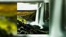 FREE Juice Wrld Type Beat Jungle ft Lil Skies Prod Mike Vegas