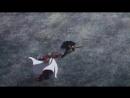 Песня История Кирито и Асуны Масте Online (360p).mp4