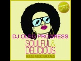 DJ Oleg Progress-Soulful &amp Delicious House Music Grooves (New York City Edition)