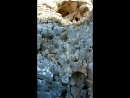 Экскурсия в Акрополь Линдоса