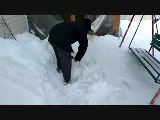 Стас разгребает снег к вольеру. 10.02.19
