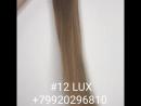 12 LUX Natural Hair 79920296810 RTC-Hair