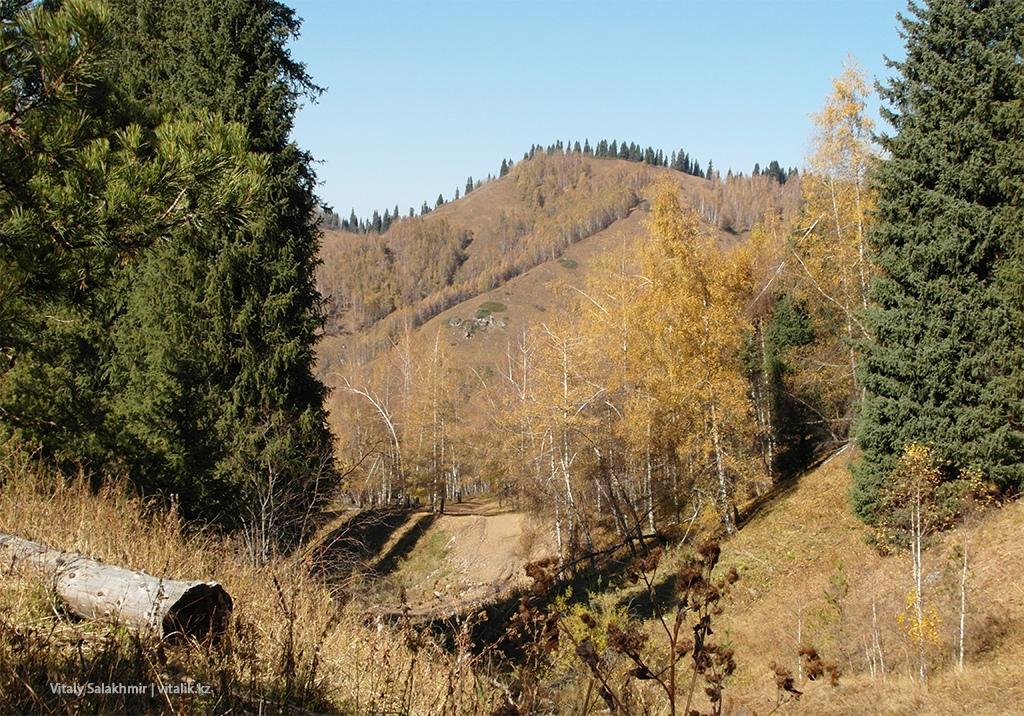 Ущелье Дорога Бутаковка через Медеу