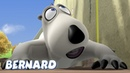 Bernard Bear JUGANDO AL FRONTÓN Dibujos animados para niños WildBrain