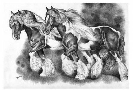 Животные нарисованные карандашом vk