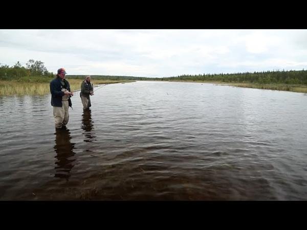 Диалоги о рыбалке. Щука (HD)