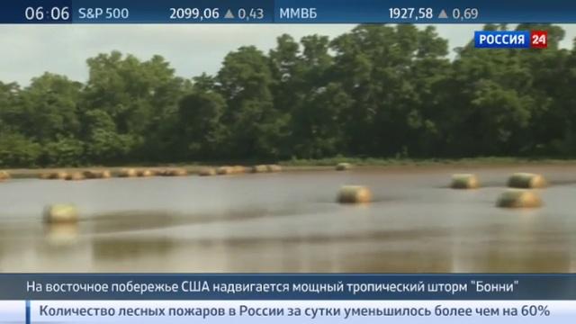 Новости на Россия 24 На побережье США стремительно надвигается тропический шторм Бонни