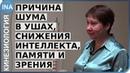 Шум в ушах. Снижение интеллекта, памяти и зрения. Людмила Васильева. Германия