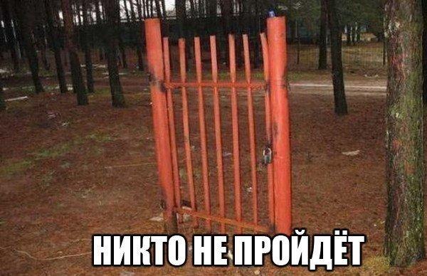 http://cs14102.vk.me/c617317/v617317685/48f6/GfdsD-Ruw9A.jpg