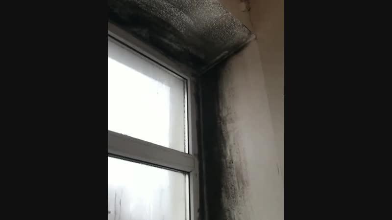 Инфекционное отделение городская детская больница Низки ⠀ невинномысск кочубеевское пятигорск кисловодск черкесск ставропо