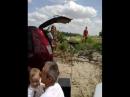 2013.07.28 (день ВМФ) прощай любимый город
