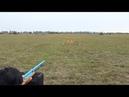 Chế tạo súng hơi bắn nát lon nước ngọt với máy bơm không khí - Chế đồ vlog
