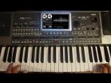 Italo Disco- Мальчишник-Ночь Remix (Korg Pa900) Demo Style