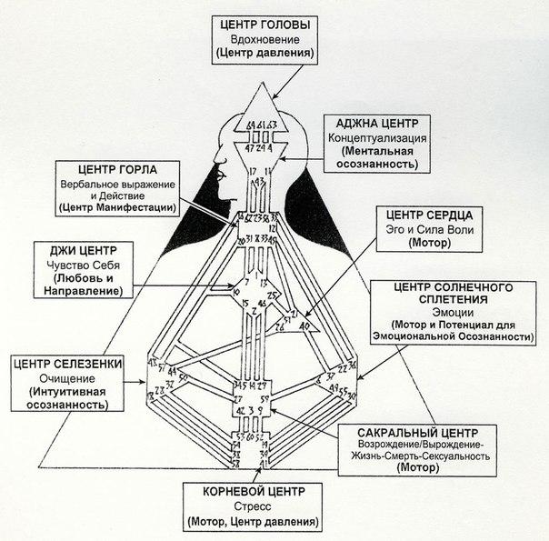 Внутренний авторитет эмоциональный в дизайне человека