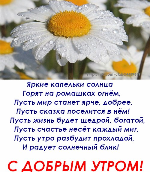http://cs406316.userapi.com/v406316947/14df/QIZpdYE-Bxg.jpg