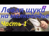 Ловля щуки на мелководье поверхностными приманками (воблеры,попперы,уокеры),Алексей Шанин видео