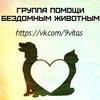 """""""9 ЖИЗНЕЙ"""" Помощь Бездомным Животным г. Тула"""