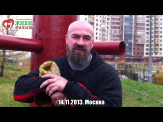 Сергей Бадюк приглашает на концерт в Москве.
