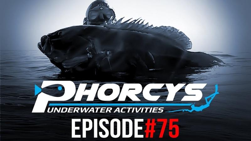 PHORCYS UNDERWATER ACTIVITIES - EPISODE75